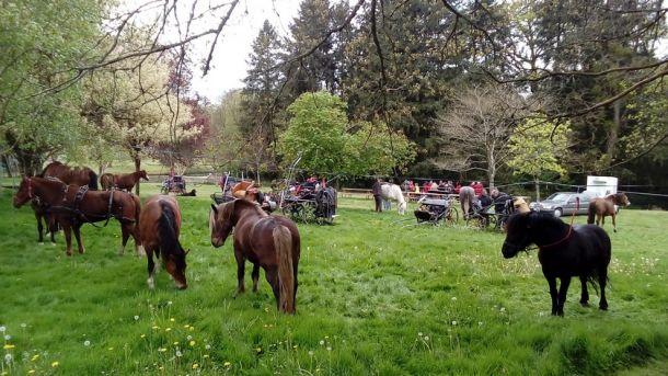 Les cavaliers de SAINT-GUYOMARD
